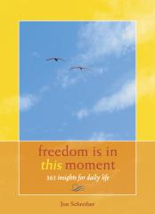 Freedom Is in This Moment book by Jon Schreiber