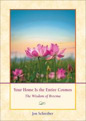 Your Home Is the Entire Cosmos book by Jon Schreiber