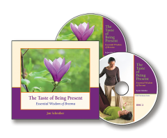 The Taste of Being Present audio book image