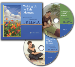 Waking Up to This Moment audio book image