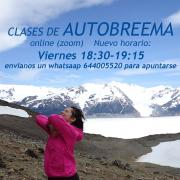 Patagonia Self-Breema