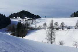 Snowy mountain top in winter in Bühl Germany