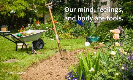 Shovel and wheel barrel in a newly tilled bed of a vibrant garden