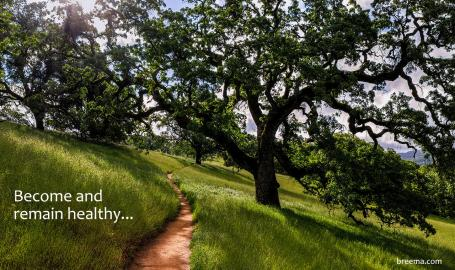 Well-traveled path on lush green hillside under oak canopy