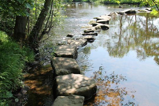 Stone steps across a stream