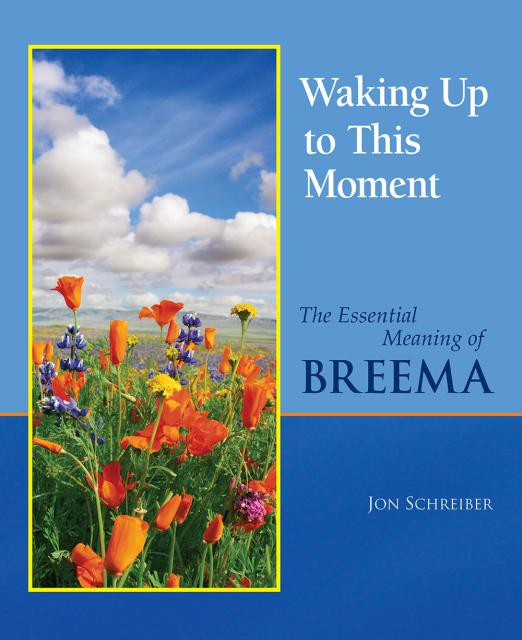Waking Up to This Moment book by Jon Schreiber