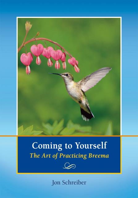 Coming to Yourself book by Jon Schreiber